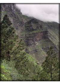 Valle de Agaete 6 Per